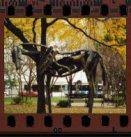 wooden horse - chicago