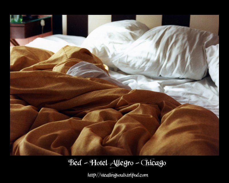 Bed - Hotel Allegro - Chicago